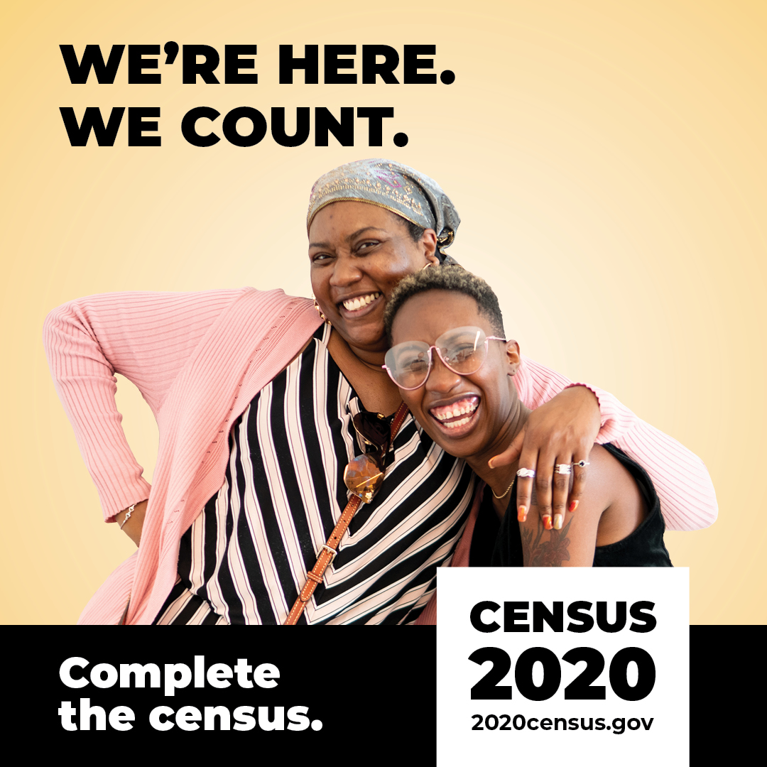 Census Campaign Social Graphics